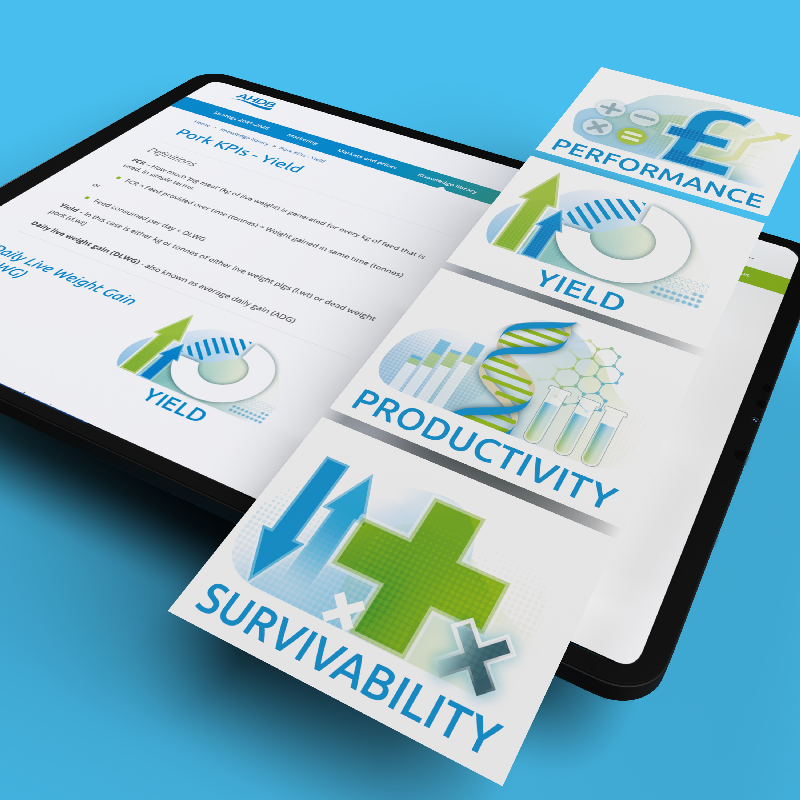KPI-web illustrations